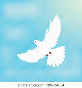 White dove or bird soars, flying in space design flat.