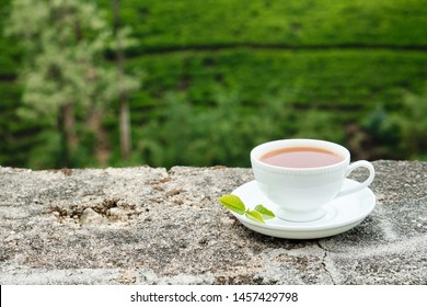 White Drink Cup Isolated on Plantation Background. Ceramic Mug with Freshness Sweet Hot Beverage Decorated Green Leaves Tea on Plate. Traditional Energy Aromatic Breakfast Nutrition