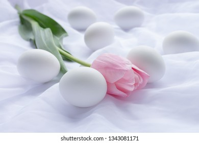 White Easter eggs and pink tulip laying on white fresh linen