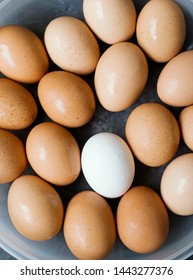 White egg among brown eggs in basket