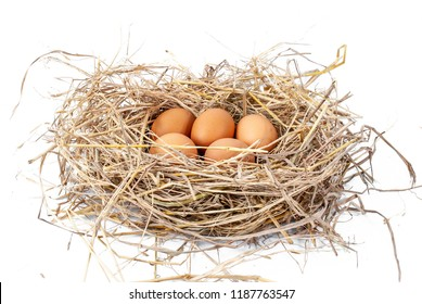 White egg white background Eggs in a pile of straw