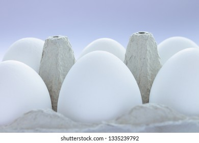 White eggs in grey carton egg holder, close up
