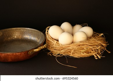 White eggs on the nesting box and a pan