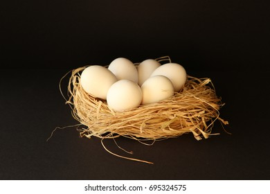 White eggs on the nesting box