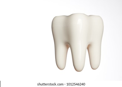 White enamel tooth model isolated on white
