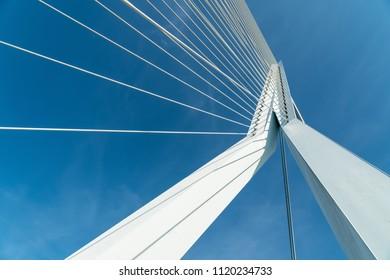 White Erasmus bridge in Rotterdam