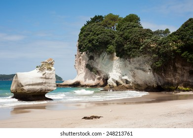White, eroded rocks and an empty beach near Cathedral Cove, Coromandel Peninsular, New Zealand.