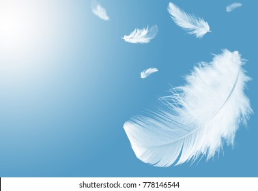 white feather flaoting in the air, on blue sky
