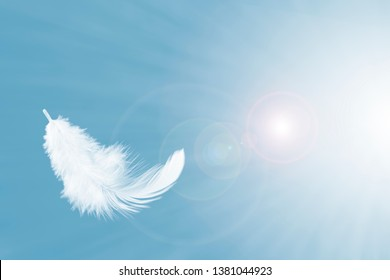 white feather floating in the air, on a blue sky. feather abstract background.