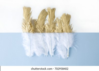 a white feather painted over half of its length. Pastel blue background. Minimal color still life photography