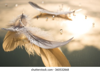 White feathers and transparent beads on the the gold mirror