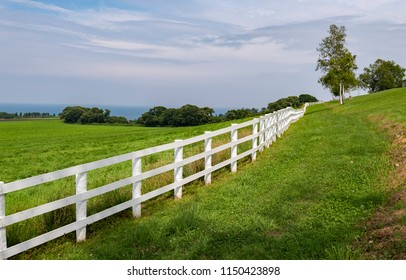 White fence along green grass field