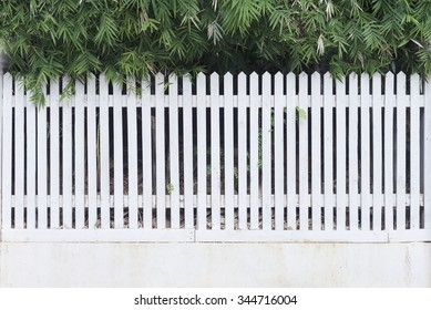 white fence and bamboo tree