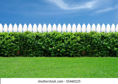 White fence and green grass on blue sky.