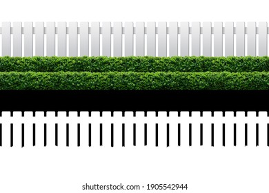 White fence and hedge on white background