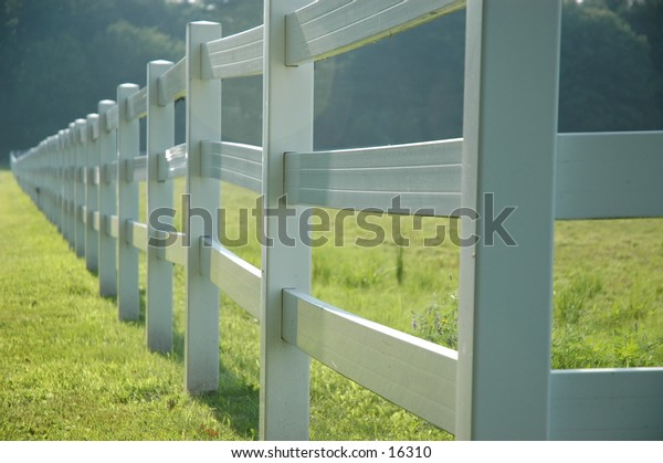 White fence running diagonally through the image.