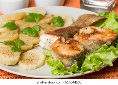 White fish with potato, salad and celery on white plat