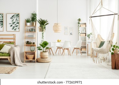 White flat interior with leaves posters and brazilian chair hanging by the window