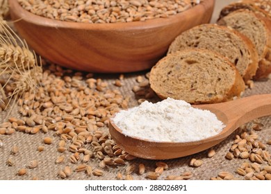 White flour in a wooden spoon, wheat and bread on a sacking background