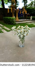 white flower in glass on table outdoor.