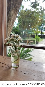 white flower in glass on table near windows in coffee shop.