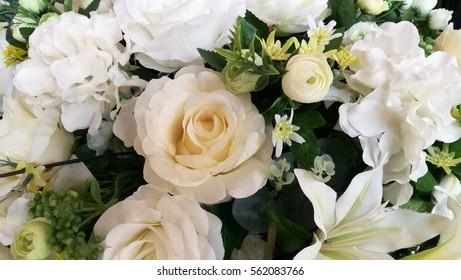 White flower in nice day.