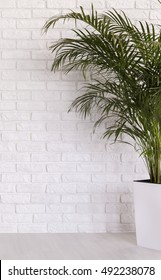 White flower pot with a palm tree on a white brick wall background