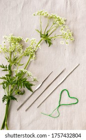 White flowers of hemlock-parsley (Conioselinum tataricum) and crochet hooks on rustic linnen background. Top view flatlay.