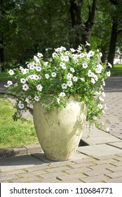 white flowers in a large vase in the garden