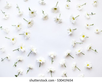 White flowers on white background, with the space for text, top view, flat lay