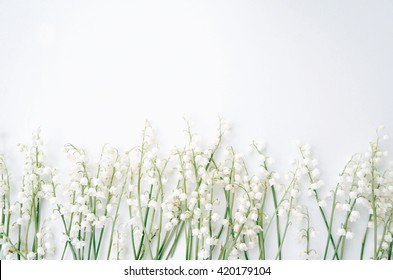 White flowers on a white background. Styled photo. Lilly of the valley
