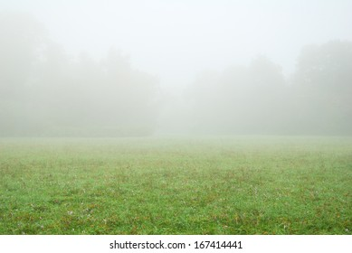 White fog and green meadow in an autumn morning