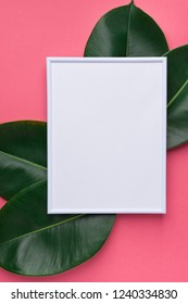 White frame mockup with beautiful big green ficus leaves on cherry pink background. Organic Cosmetics Wellness spa body care concept. Minimalist. High resolution poster. Copy space