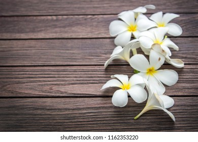 White frangipapi flower on wood table with copy space for background. frangipapi flower is aroma flower and symbol of asian spa concept.