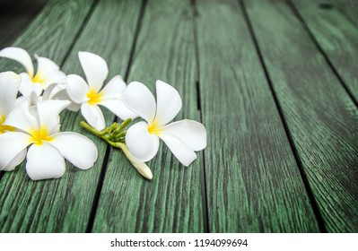 White frangipapi flower on wood table with copy space for background.