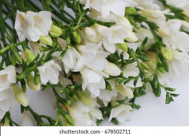 White freesia flower bouquet
