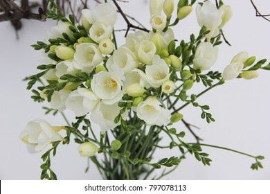 Freesia images stock photos vectors shutterstock white freesia flowers mightylinksfo