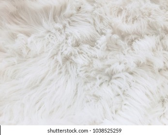 white fur hair texture background