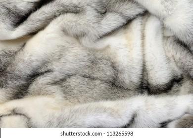 White fur mink background texture
