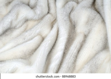 White fur mink background texture