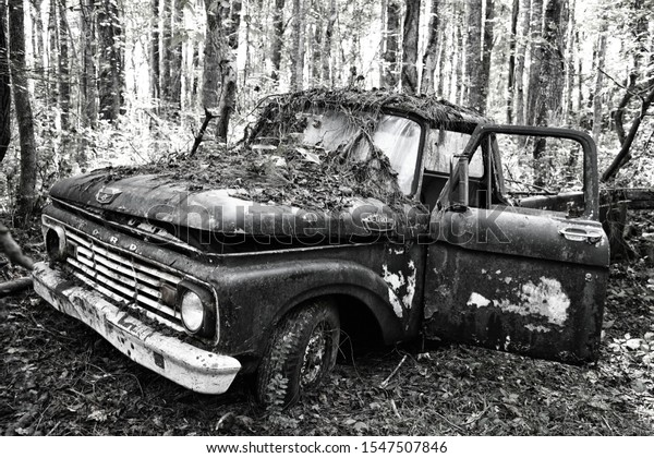 White, GA / USA - October27, 2018 - Old Scrap Ford Truck in the Woods at a Junk Yard.