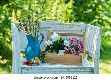 White garden bench with colorful summer flowers in a summer garden