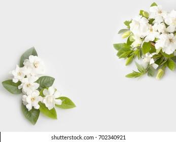 White gardenia flower images stock photos vectors shutterstock white gardenia flower bouquet isolated on white background mightylinksfo