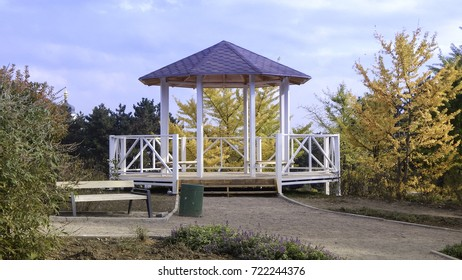 A white gazebo with yellow trees and bluew sky behind in autumn park