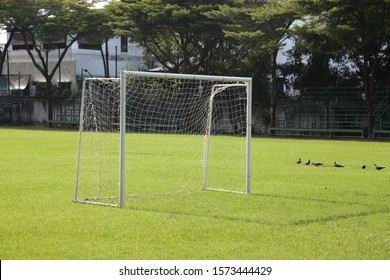 white goal in football yard