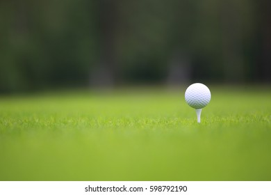 White Golf ball on tee on green grass of golf course