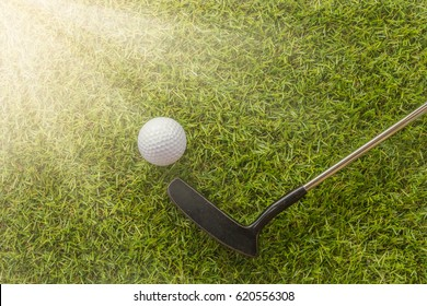 White golf ball  and putter on green grass.