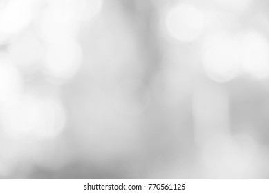 White and gray abstract background bokeh from natural. christmas blurred beautiful from nature.