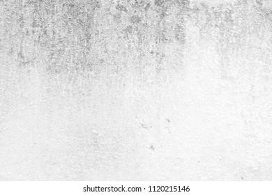 White Grunge Wall Texture Background.