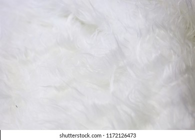 White hair texture of carpet